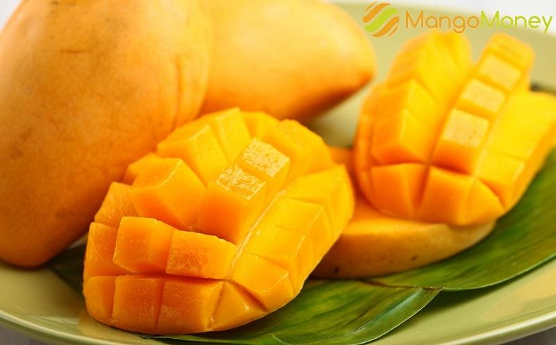 mangomoney в ессентуках