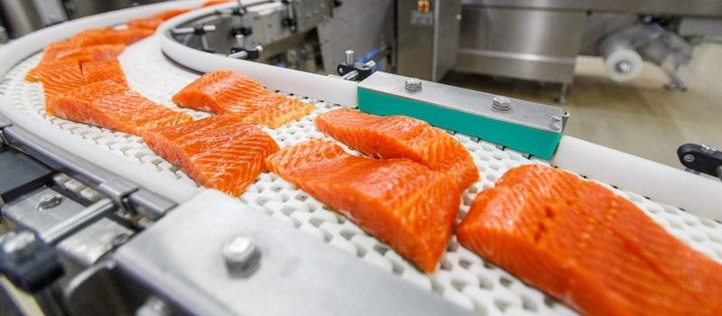 Кредиты банков Калининграда для открытия завода по переработке рыбы