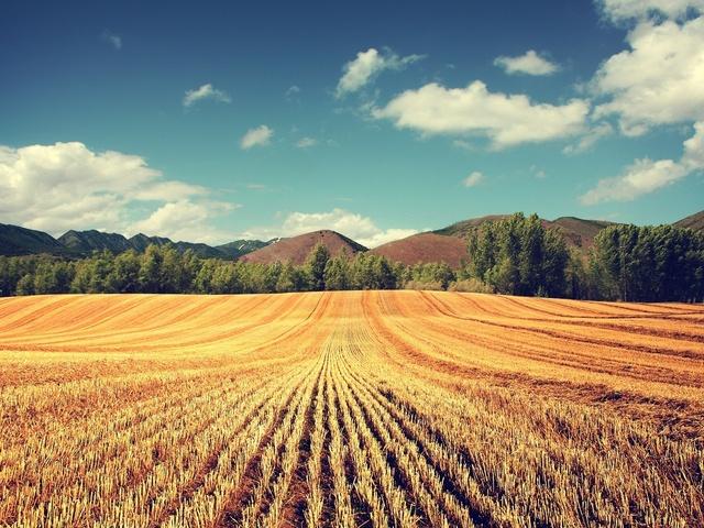 Кредит под сельхоз земли