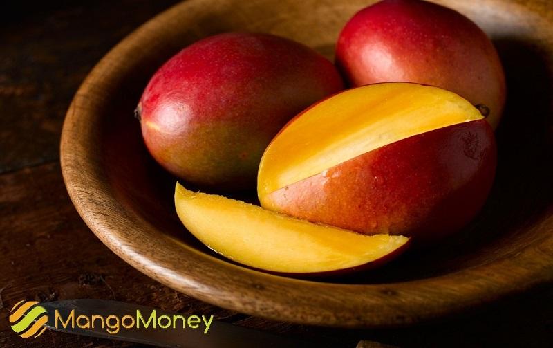 mangomoney в евпатории