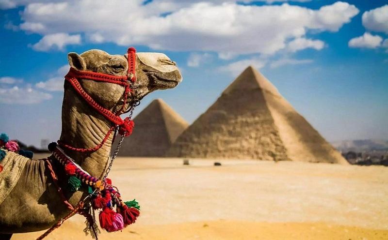Кредиты в Черепаново на отдых в Египте
